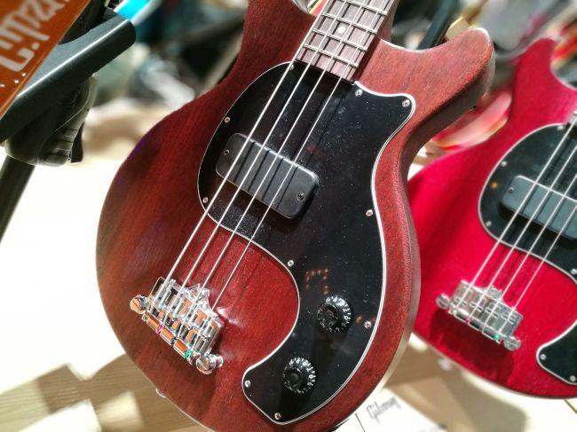 Les Paul Junior Tribute DC Bass - Worn Brown