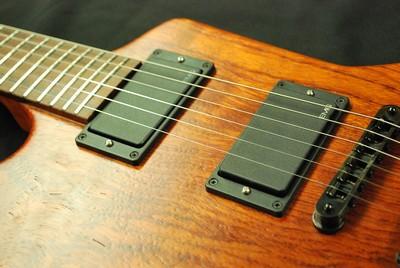Gitar Yapımında Kullanılan Tüm Ağaç Türlerini İnceliyoruz 12