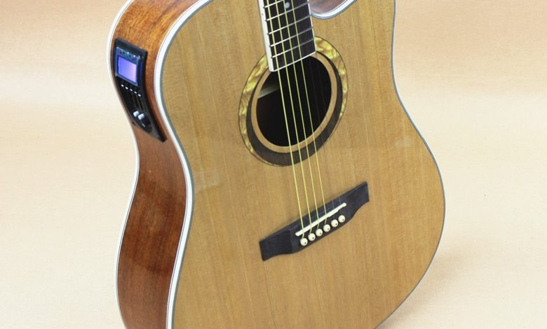 Dreadnought Akustik Gitar Nedir? Kısa Tarihi 1