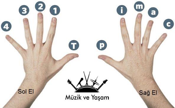 gitar-parmak-numaraları ve harfleri